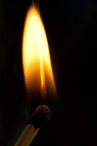 Matchstick burns 84877